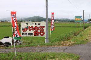藤原農園_0001